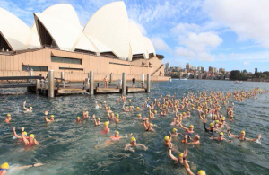 Swim in Sydney Harbour