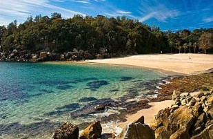 Shelly Beach (Manly)